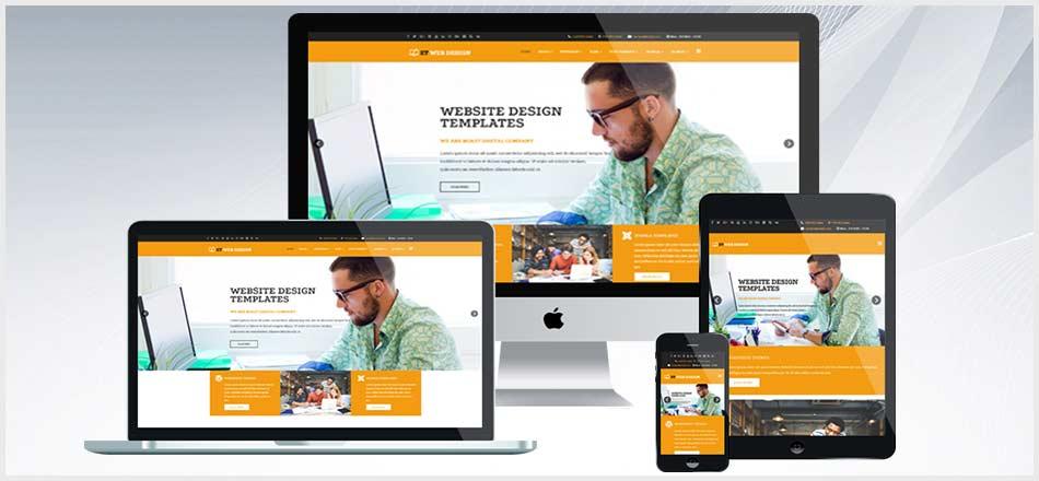 tasarımmania web tasarım